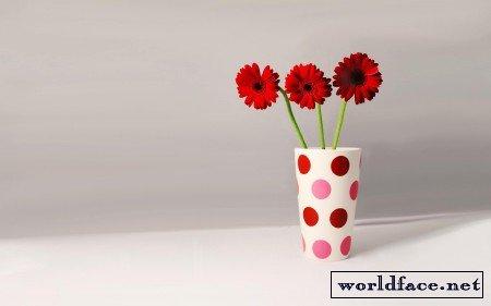 Обои Яркие красивые цветы на рабочий стол   281x450